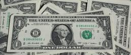 One Dollar Geld Money